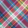 Corrigan Plaid Red Tie
