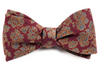 Intellect Floral Burgundy Bow Tie