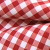 Novel Gingham Red Bow Tie