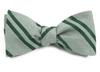 Wool Path Stripe Moss Green Bow Tie