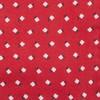 Wonder Floral Apple Red Pocket Square