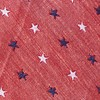 Star Spangled Red Tie