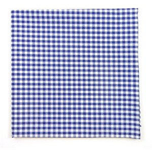Novel Gingham Royal Blue Pocket Square