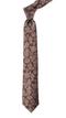 Intellect Floral Dark Brown Tie