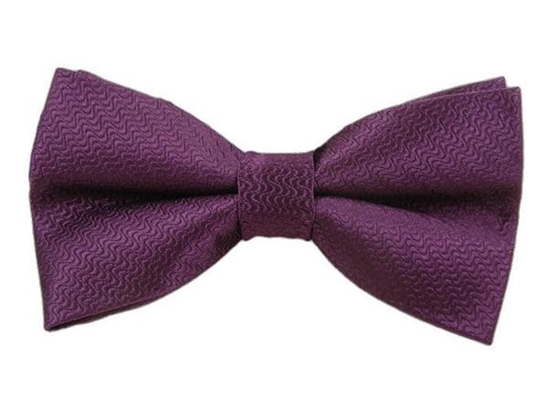 Static Solid Plum Bow Tie