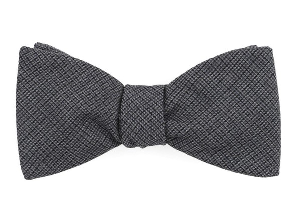 Observation Solid Grey Bow Tie