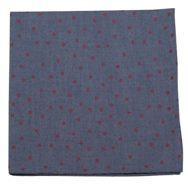 Chambray Stars Red Pocket Square