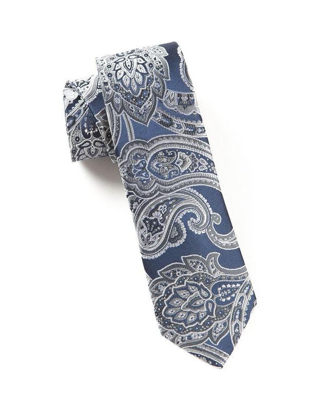 Aaron Paisley Silver Tie