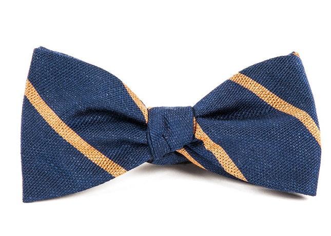 Spring Break Stripe Navy Bow Tie