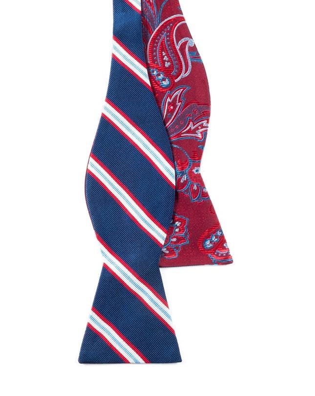 Pin Paisley Stripe Navy Bow Tie