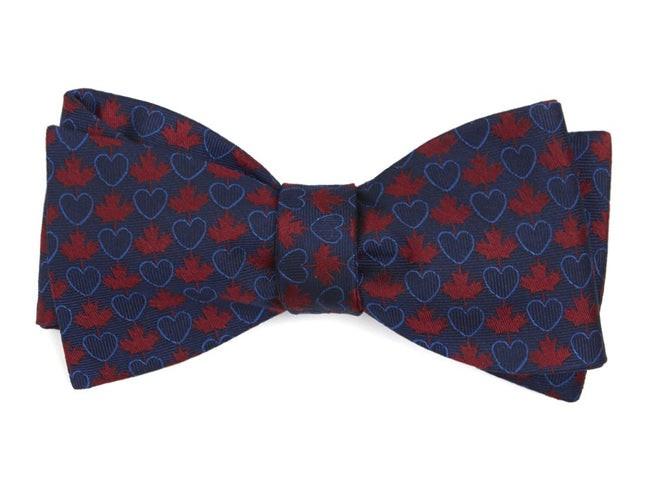 The Eric Mccormack Navy Bow Tie