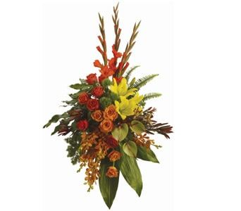 Tropical Tribute for flower delivery new zealand wide