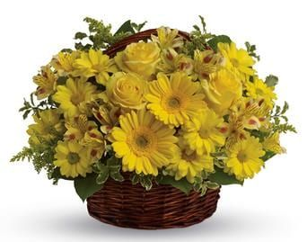Basket of Sunshine for flower delivery new zealand wide