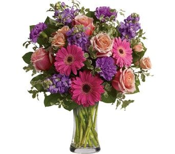 Pure Bliss for flower delivery new zealand wide