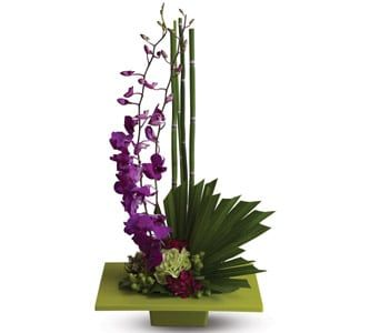 Zen Artistry for flower delivery new zealand wide