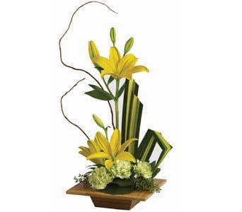 Serene Artistry for flower delivery new zealand wide
