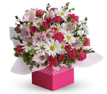 Polka Dot for flower delivery australia wide