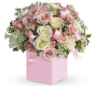 Celebrating Baby Girl for flower delivery new zealand wide