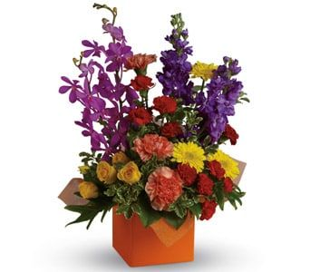 Surprise and Shine for flower delivery united kingdom wide