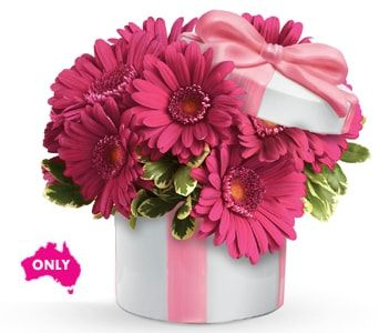 Hats Off to Daisy for flower delivery australia wide