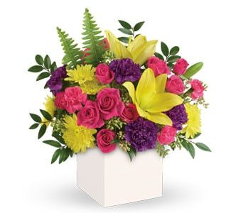 Vivid Delights for flower delivery australia wide