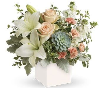 Pedirka Sunrise for flower delivery Australia wide