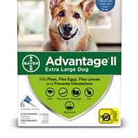 Advantage II Once-A-Month Topical Extra Large Dog Flea Treatment, 6 mo., Over 55 lbs.