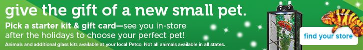 give the gift of a new small pet - pick your kit