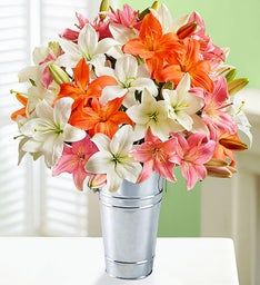 Vibrant Summer Lilies: Double Your Bouquet for Free