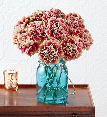 Antique Pink Carnations