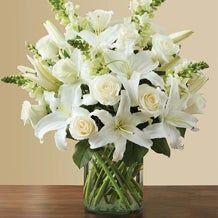 Vase & Basket Arrangements