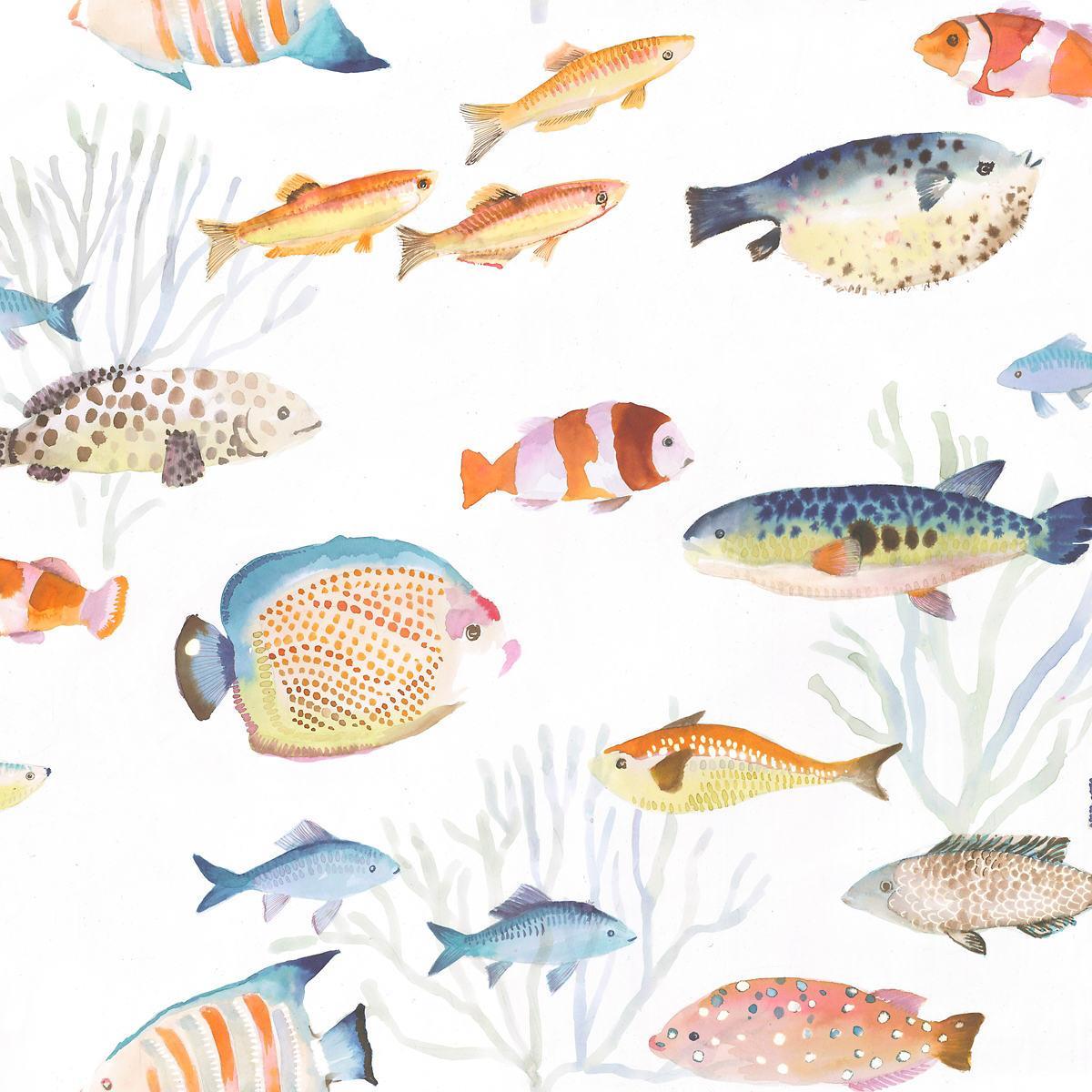 Fish Duvet Cover Set with Pillow Shams Array of Fish Marine Life Print