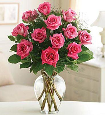 Rose Elegance™ Premium Pink Roses