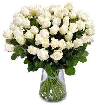 Wonderful white roses