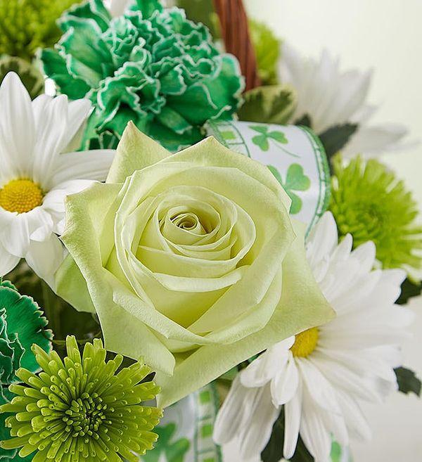 St. Patrick's Day Flower Basket™